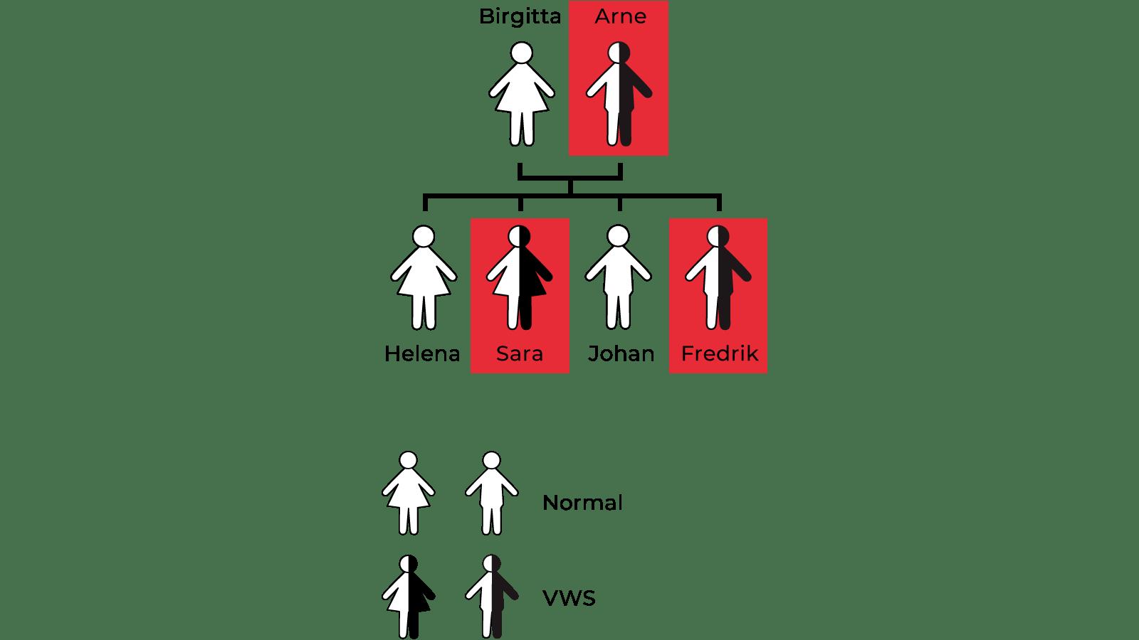 transparent family tree small